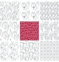 Tulips Seamless Patterns Set vector image