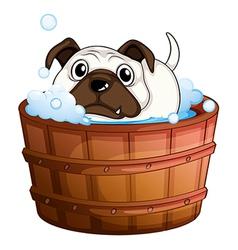 A bulldog inside the bathtub vector image
