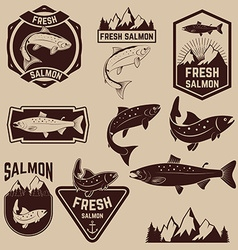 fresh salmon labels set vector image