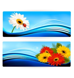 Nature banners with color flowers vector image