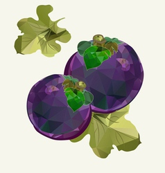 Polygonal Mangosteen vector