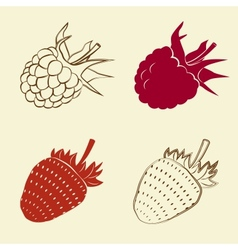 Raspberry and strawberry icons vector