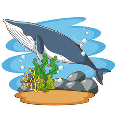 Whale swimming in sea vector