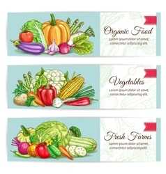 Organic vegetables food banner set vector image vector image