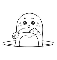 Seals eat fish vector image vector image