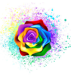 Colorful rainbow rose vector