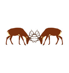 Deer battle isolated powerful buck fight vector