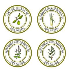 Set of essential oil labels lime lemongrass vector