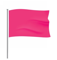 Waving pink flag template vector image