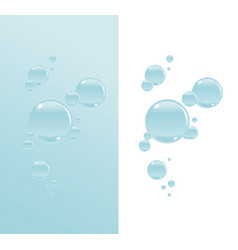 transparent water bubbles vector image vector image