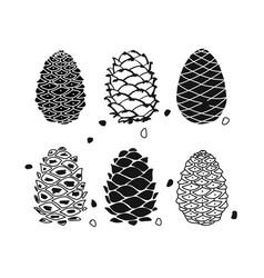 cedar cone set sketch for your design vector image