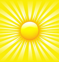 bright sunburst vector image vector image