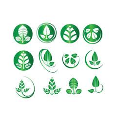 green leaf set round circle ecology icons vector image