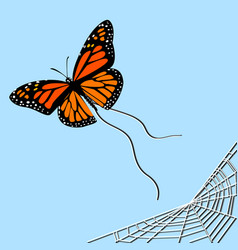 A butterfly that escaped from the web a thematic vector