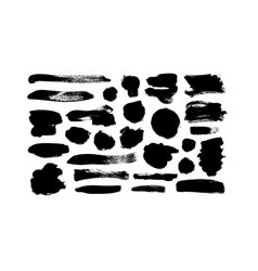 black paint ink line brushstrokes vector image