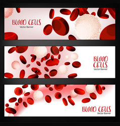 Blood cells banners vector