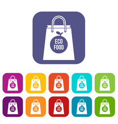 eco food bag icons set vector image