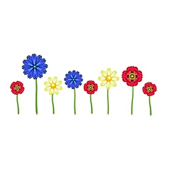 Red poppy camomile and cornflowers vector