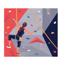 sports woman with equipment climbing at training vector image