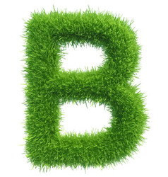 Capital letter b from grass on white vector