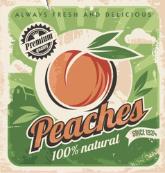 Peaches vintage poster template vector image