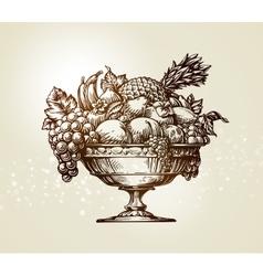 Vintage fruit bowl sketch vector
