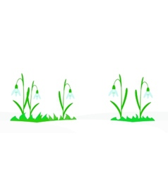 Seamless with snowdrops vector image