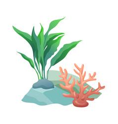 Aquarium stone and plant set vector