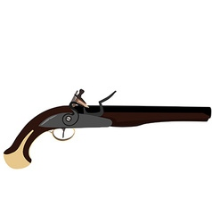 Musket gun vector