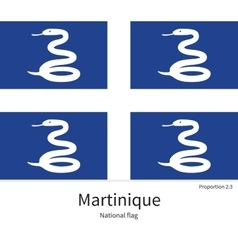 National flag of Martinique with correct vector