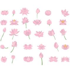 pink lotus symbol icons lotus flower logo vector image