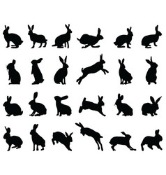 silhouettes rabbits vector image