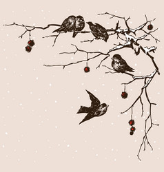Sparrows on branches vector