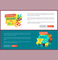 Special promotion discount set vector