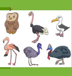 cartoon birds species animal characters set vector image