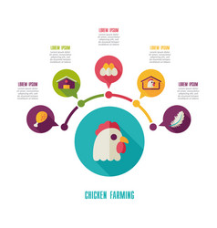 Chicken farming icon and agriculture infographics vector
