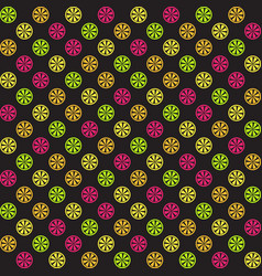 citrus pattern seamless background vector image