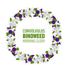 Garland with bindweed flowers element for design vector