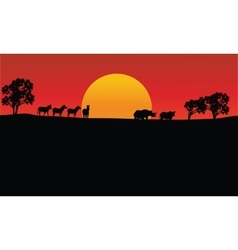 Landscape zebra and rhino silhouette with sun vector image