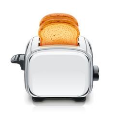 Metallic toaster kitchen vector