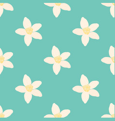 Neroli flower seamless pattern oil plant vector