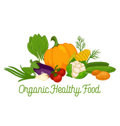 organic food vegetables vegetarian and vegan fresh vector image