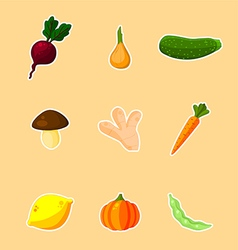 Vegetables - set vector