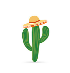 cool mexican cactus vector image