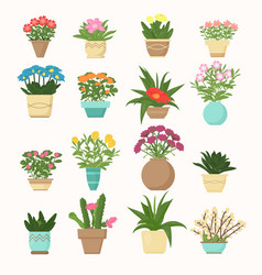 colorful set of flowers and vector image