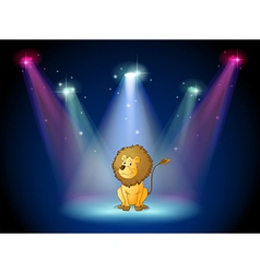A lion sitting with spotlights vector