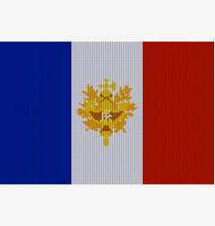 flag and emblem of france on knitted texture vector image