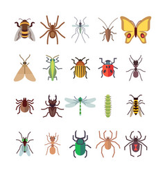 Flat insects icons set butterfly dragonfly vector