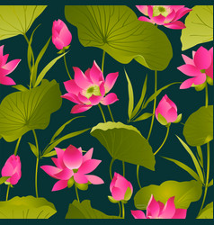 lotus flowers and leaves watercolor vector image