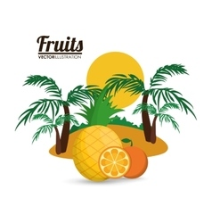 Orange pineapple palm tree and summer concept vector